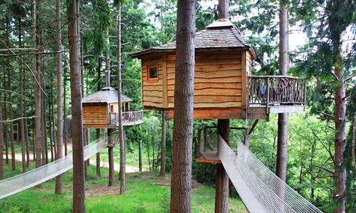 ... setmana . les cabanes als arbres de Sant Hilari de Sacalm : Excelsium