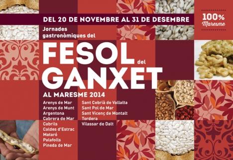 ganxet_Fesol-2014