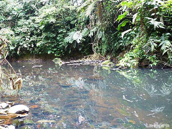 rio-contaminado